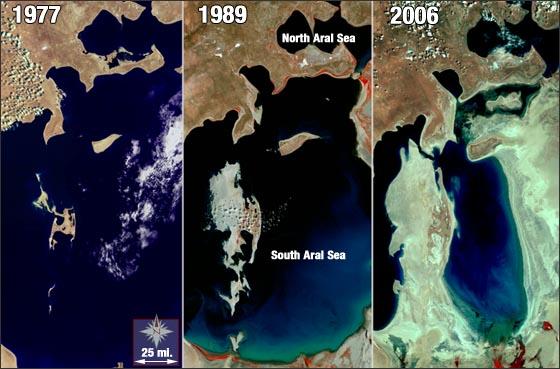 Hur aralsjön har påverkats av bomullsodlingen